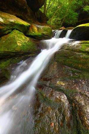 national forest: Hermosa vista de la Baja Caney Creek cae en el bosque Bankhead Nacional de Alabama