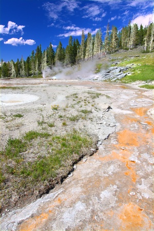 View of the thermal features near Grand Geyser of Yellowstone National Park photo