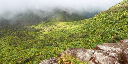 Misty clouds sweep over the rainforest in the mountains of El Yunque National Forest - Puerto Rico photo