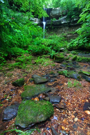 Moss covered boulders below a beautiful waterfall in the deep forests of northern Alabama photo