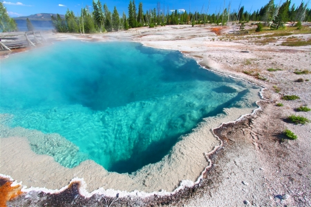 hydrology: Black Pool of the West Thumb Geyser Basin in Yellowstone National Park