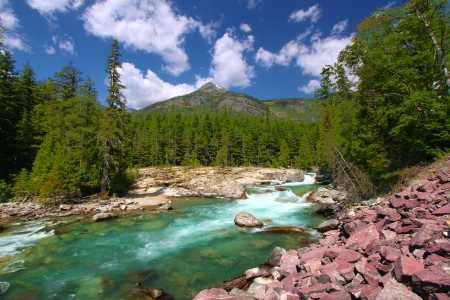 McDonald Creek flows swiftly through the forests of Glacier National Park in Montana