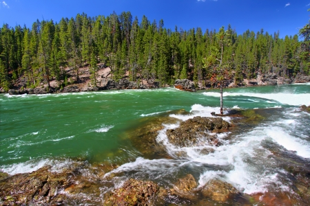 fueled: Swift current and rapids of the Yellowstone River fueled by snowmelt of the previous winter