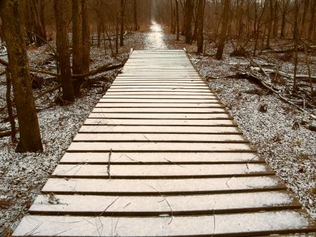 boardwalk trail: Light snow over a wooden boardwalk on an Illinois hiking trail Stock Photo