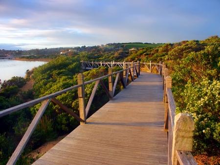 Boardwalk durch Vegetation entlang der Küste in Warrnambool Australien Standard-Bild - 14483068