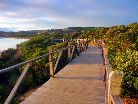 Boardwalk through vegetation along the coastline in Warrnambool Australia Stock Photo