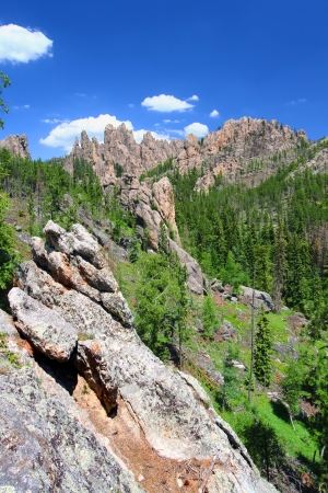 The Black Hills of South Dakota is scattered with rock formations referred to as the Needles photo