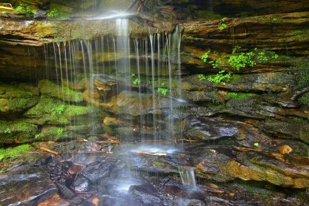 Waterfall and Moss in Alabama 版權商用圖片