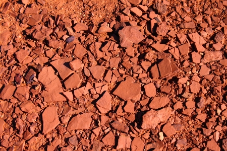 parch: Cracked substrate of Capitol Reef National Park in Utah