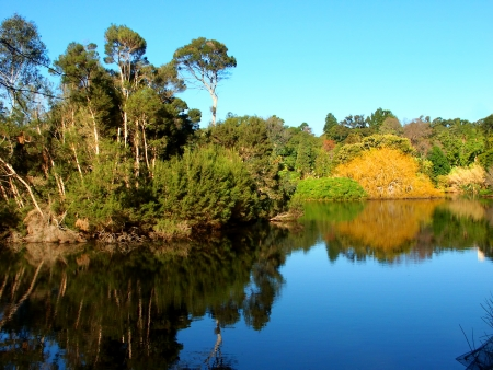 Lake in the Royal Botanic Gardens of Melbourne Australia Stock Photo