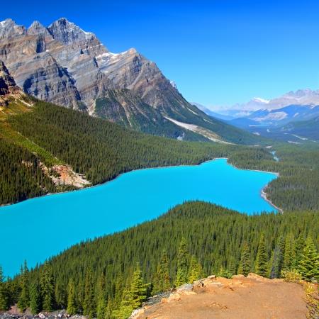 Magnificent blaue Wasser des Lake Louise im Banff National Park in Kanada Standard-Bild - 16659611