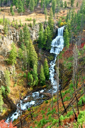 undine: Undine Falls on an autumn day in Yellowstone National Park of Wyoming