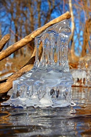 hydrology: Natural ice sculptures along the Kishwaukee River in northern Illinois