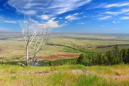Spectacular Wyoming countryside seen from the Bighorn National Forest