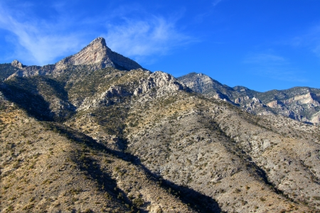vegatation: Red Rock Canyon National Conservation Area is located just west of Las Vegas in Nevada