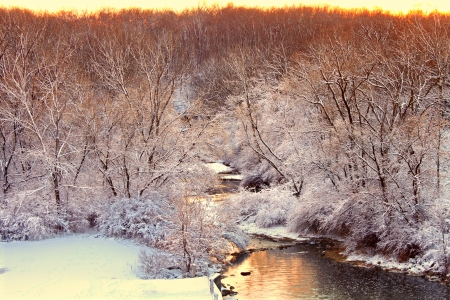 Willow Creek flows through Rock Cut State Park of Illinois on a snowy winter day photo