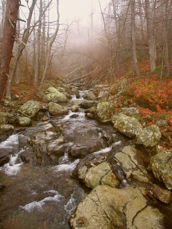 Shenandoah National Park Virginia photo