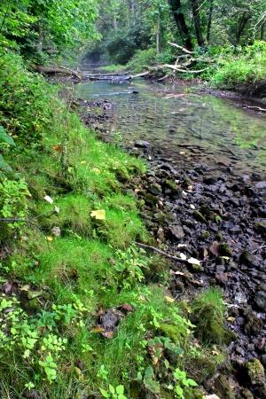 hydrology: Kinnikinnick Creek Conservation Area Illinois Stock Photo
