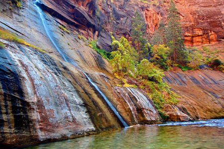 Small stream flows into Virgin River Narrows in Zion National Park Utah photo