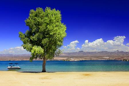 nevada: Lake Mohave Beach Nevada Stock Photo
