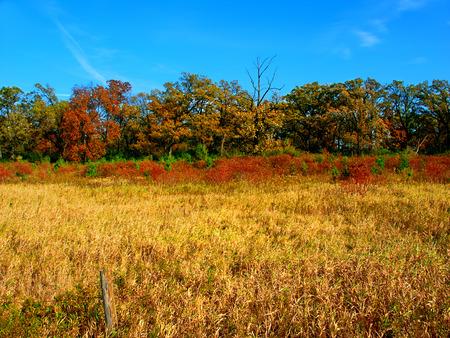 wisconsin: Rural Wisconsin Landscape Stock Photo