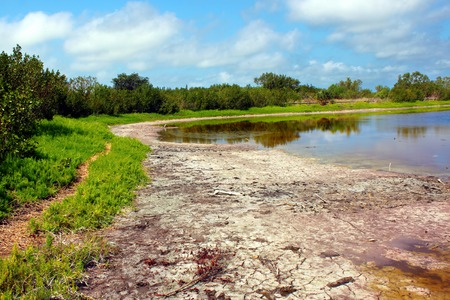 everglades: Eco Pond in Everglades National Park Florida