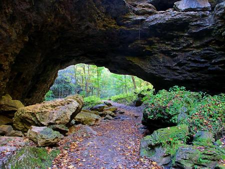 natural bridge state park: Natural bridge at Maquoketa Caves State Park in Iowa