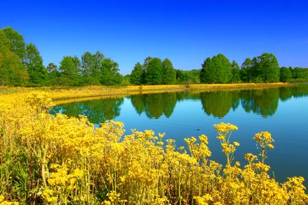 Direction Peppenhorst de Carlyle Lake à Eldon Hazlet State Park Illinois Banque d'images