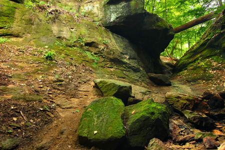 state park: Turkey Run State Park in Indiana Stock Photo