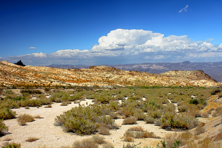 Nevada desert in the southwestern United States
