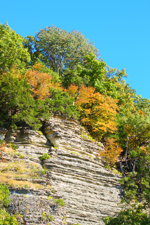 Shawnee National Forest in southern Illinois