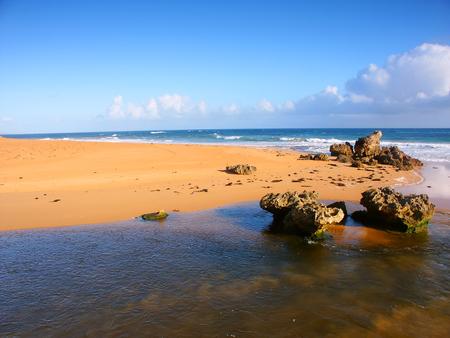 Pacific Coastline scenery in southern Victoria Australia