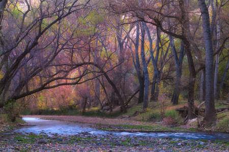 A beautiful landscape of Aravaipa Canyon, Arizona - perfect for wallpaper