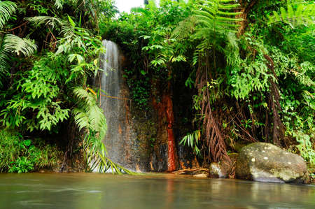 A closeup shot of a waterfall flowing in a jungle near the Mount Gede, West Java, Indonesia