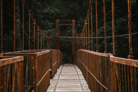 A long wooden canopy walkway bridge in a forest