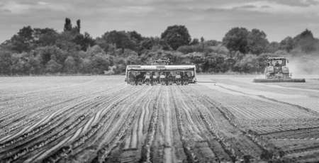 A greyscale shot of people pulling a tractor while planting cabbage seeds in Spalding, Lincolnshire, UK