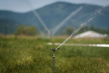 A closeup shot of automatic sprinkler system watering the lawn with mountains on the background Banque d'images
