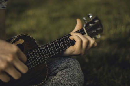 A closeup of a person playing the ukulele in a field under the sunlight