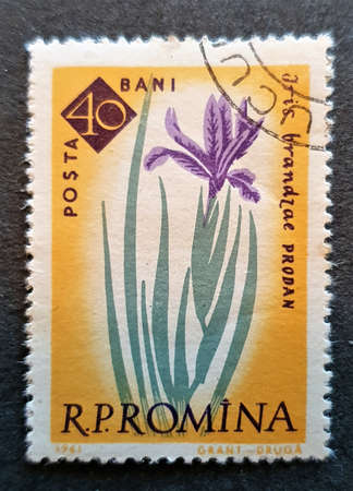 SOVATA, ROMANIA - Jul 02, 2020: an old postage stamp from Romania around 1960 with the image of a flower,plant Stock fotó