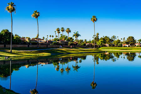 The image shows a view of the park in Scottsdale and a lake which gives a perfect reflection of the scene Imagens