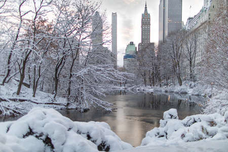 A wide shot of a frozen lake surrounded with trees filled with snow near skyscrapers at Central Park in New York Фото со стока