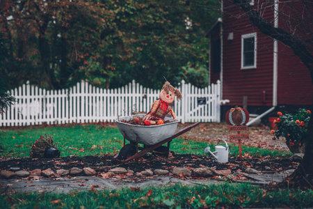 A shot of a rag doll on a wheelbarrow in the garden