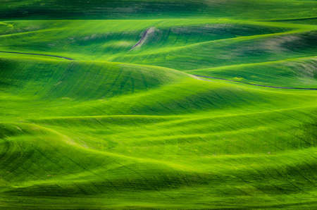 A high angle shot of grassy hills at daytime in Eastern Washington Stock fotó