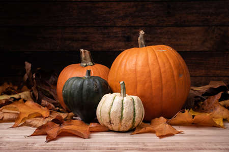 A closeup shot of pumpkins surrounded by brown leaves with a wooden background for Halloween