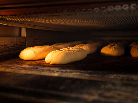 A closeup of raw bread loaves in the oven under the lights