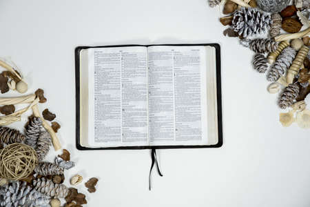 An overhead shot of an opened bible near pine cones on a white surface