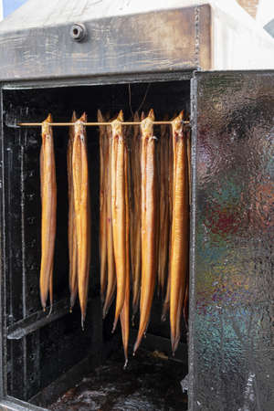 Eel hanging in a smoker. Smoked eel has been a traditional food in the Netherlands for centuries, as eel is readily available