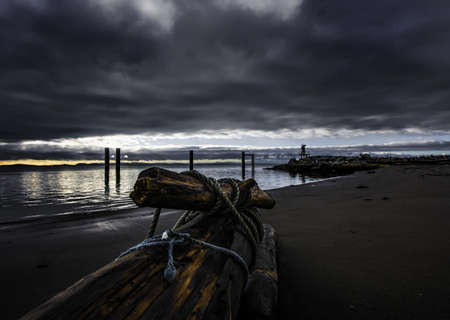 A beautiful view of an ancient wooden log on the beach near the sea under the storm clouds before heavy rain Imagens