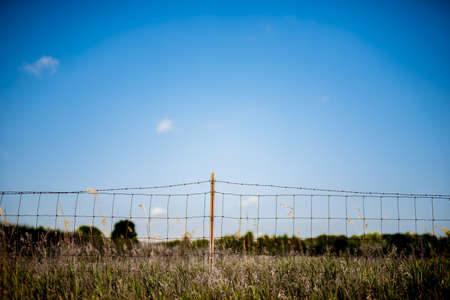 A grassy field with barb wire fence and a clear blue sky in the background