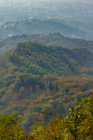 A vertical high angle shot of the autumn in the forest of the mountain Medvednica, Zagreb, Croatia
